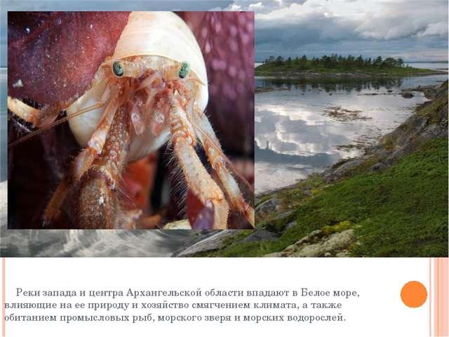 Реки запада и центра Архангельской области впадают в Белое море, влияющие на...