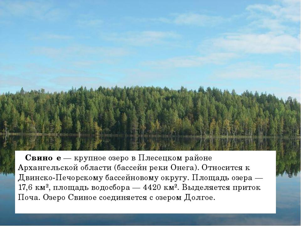 Свино́е — крупное озеро в Плесецком районе Архангельской области (бассейн ре...