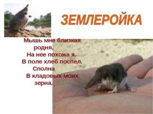 Мышь мне близкая родня, На нее похожа я. В поле хлеб поспел. Сполна В кладовы