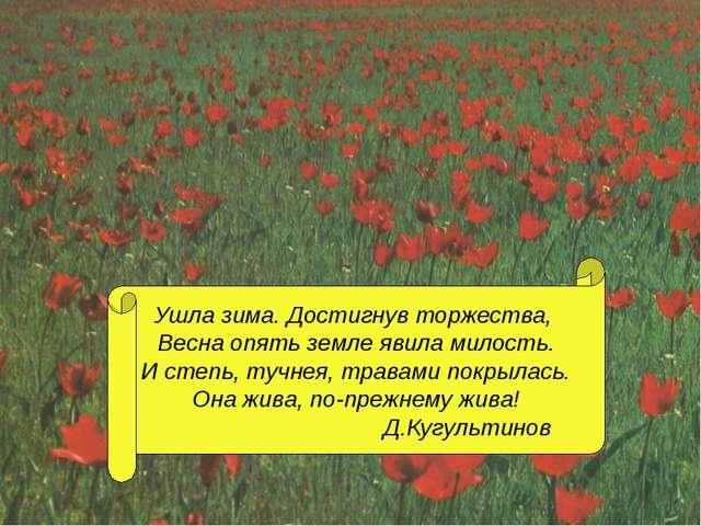 Ушла зима. Достигнув торжества, Весна опять земле явила милость. И степь, туч...
