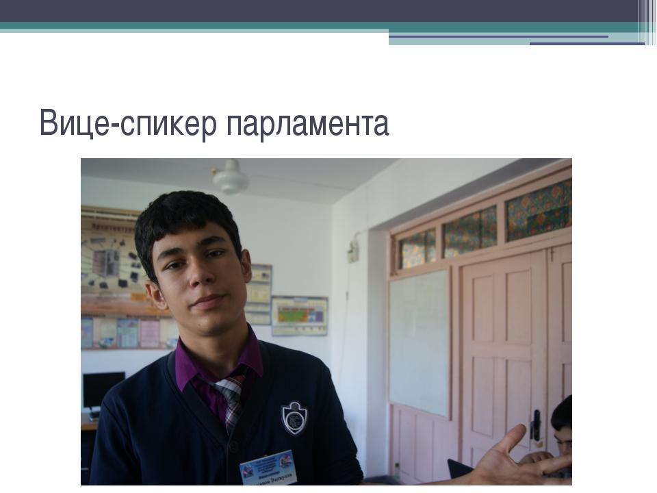 Вице-спикер парламента