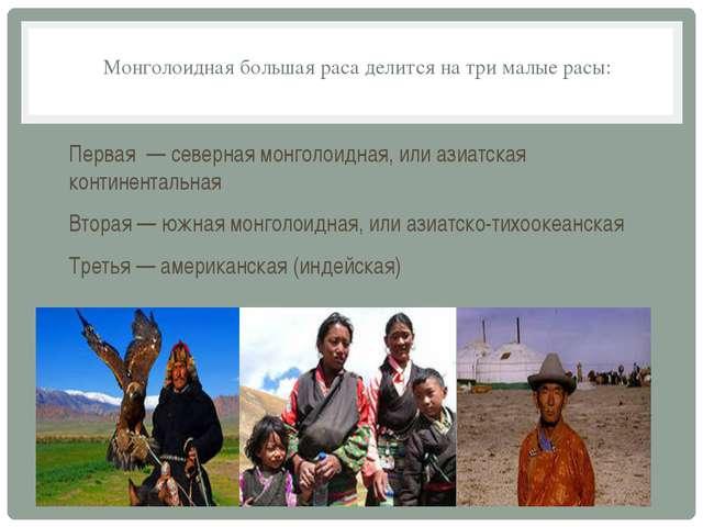 Монголоидная большая раса делится на три малые расы: Первая — северная монгол...