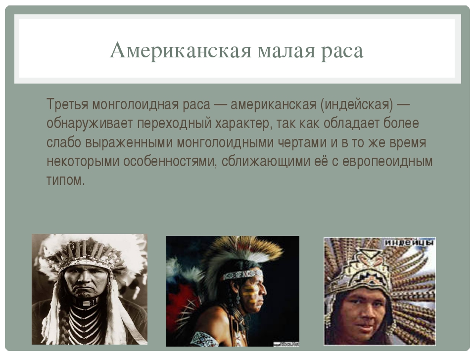 Американская малая раса Третья монголоидная раса — американская (индейская) —...