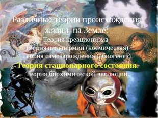Различные теории происхождения жизни на Земле: Теория креационизма Теория пан
