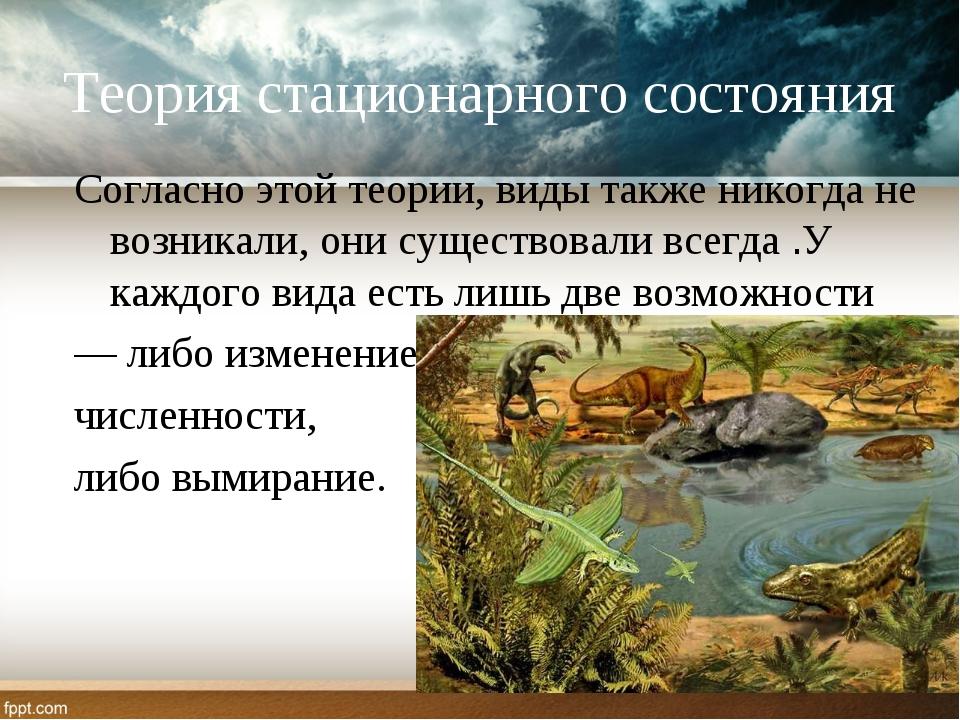 Теория стационарного состояния Согласно этой теории, виды также никогда не во...