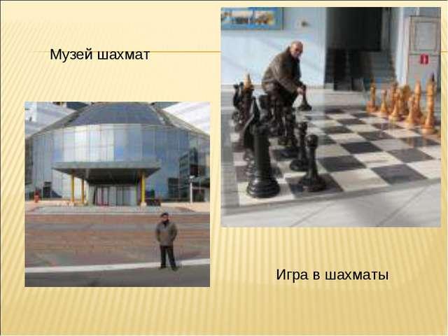 Музей шахмат Игра в шахматы