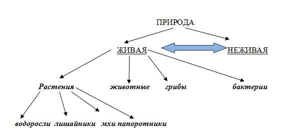 http://www.informio.ru/images/shema2.png