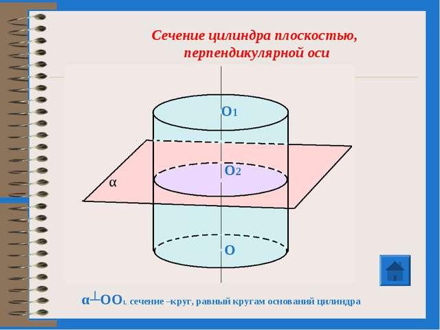 α┴OO1, сечение –круг, равный кругам оснований цилиндра Сечение цилиндра плоск...