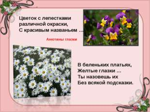 Цветок с лепестками различной окраски, С красивым названьем … Анютины глазки