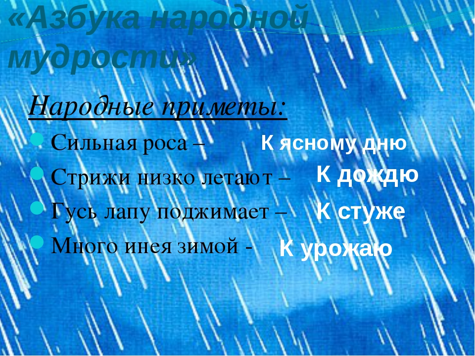 «Азбука народной мудрости» Народные приметы: Сильная роса – Стрижи низко лета...