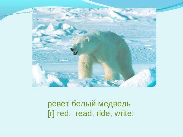 ревет белый медведь [r] red, read, ride, write;