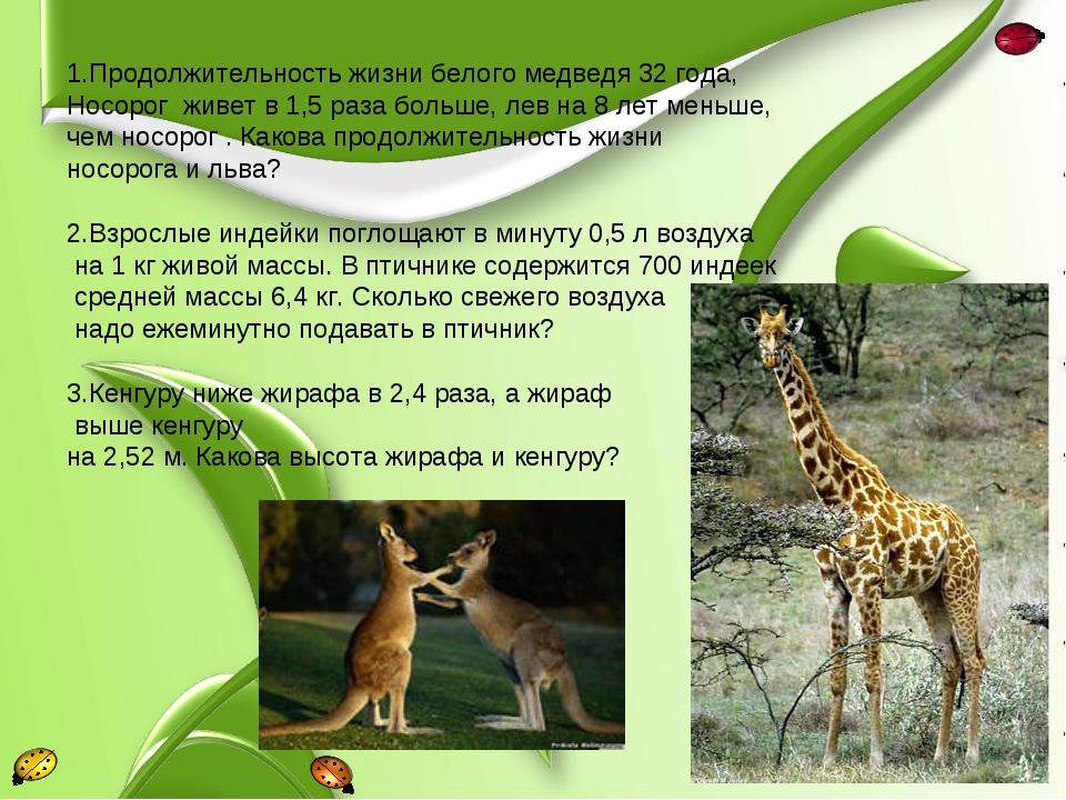 1.Продолжительность жизни белого медведя 32 года, Носорог живет в 1,5 раза бо...