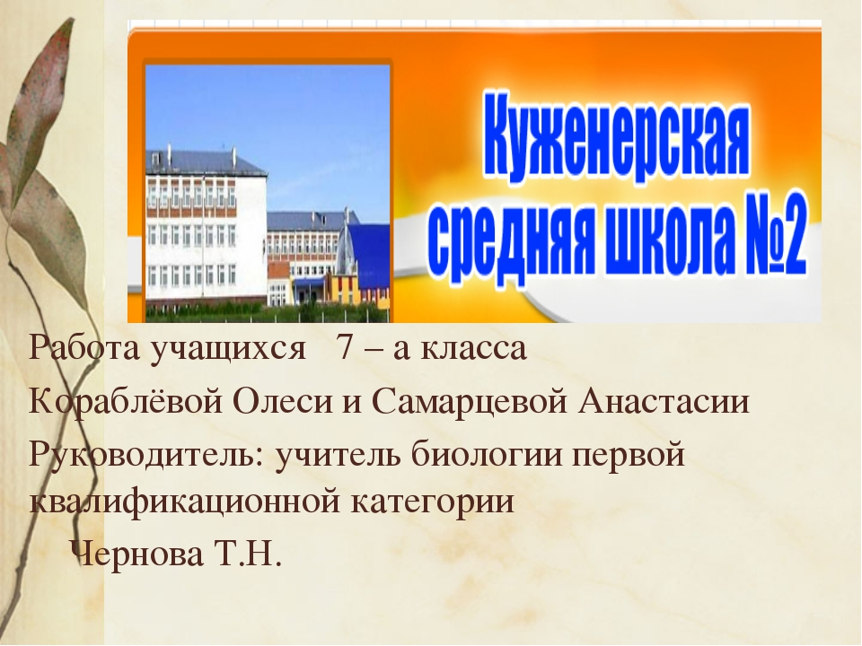 Работа учащихся 7 – а класса Кораблёвой Олеси и Самарцевой Анастасии Руковод...