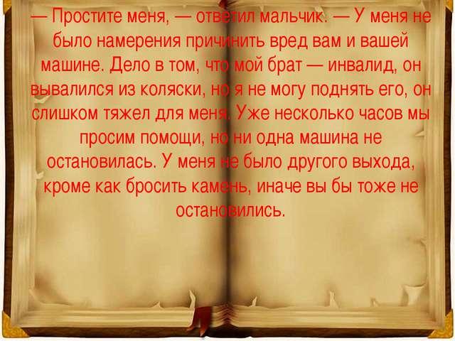— Простите меня, — ответил мальчик. — У меня не было намерения причинить вред...