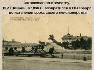 Затосковав по отечеству, И.И.Шишкин, в 1866 г., возвратился в Петербург до ис
