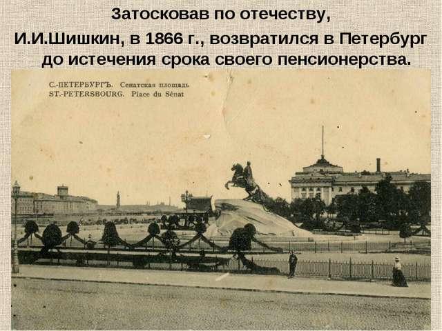 Затосковав по отечеству, И.И.Шишкин, в 1866 г., возвратился в Петербург до ис...
