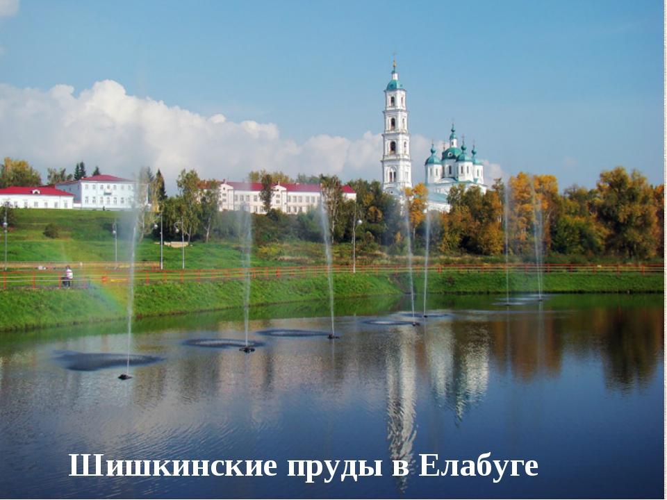 Шишкинские пруды в Елабуге