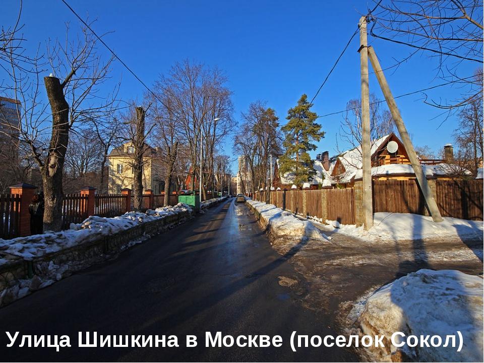 Улица Шишкина в Москве (поселок Сокол)