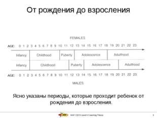 IAAF CECS Level II Coaching Theory * Ясно указаны периоды, которые проходит р