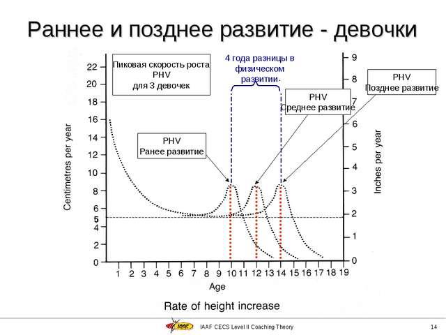 IAAF CECS Level II Coaching Theory * Раннее и позднее развитие - девочки 5 Пи...