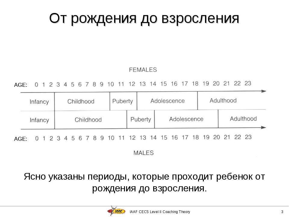 IAAF CECS Level II Coaching Theory * Ясно указаны периоды, которые проходит р...