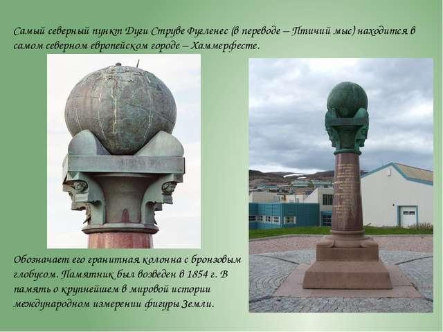 Самый северный пункт Дуги Струве Фугленес (в переводе – Птичий мыс) находится...