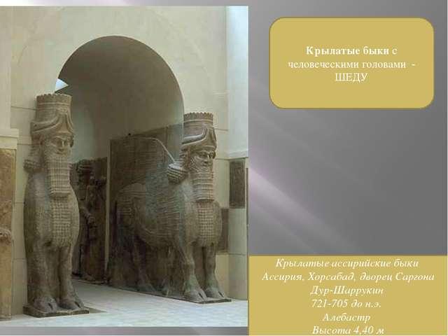 Крылатые быки с человеческими головами - ШЕДУ Крылатые ассирийские быки Ассир...
