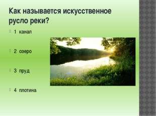 Как называется искусственное русло реки? 1 канал 2 озеро 3 пруд 4 плотина