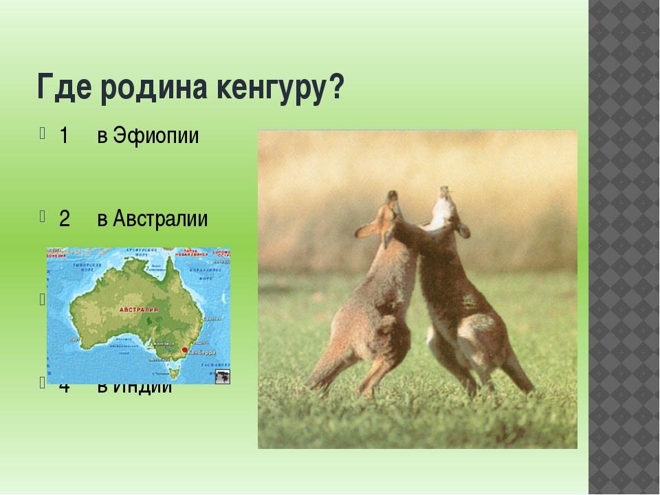 Где родина кенгуру? 1 в Эфиопии 2 в Австралии 3 в Канаде 4 в Индии