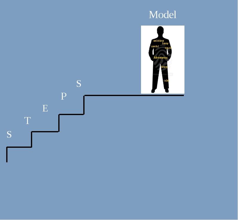 Model S T E P S