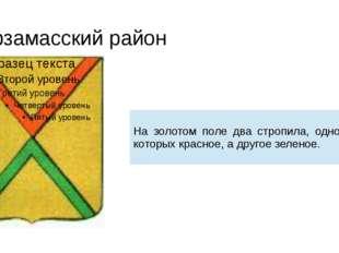 Арзамасский район На золотом поле два стропила, одно из которых красное, а др
