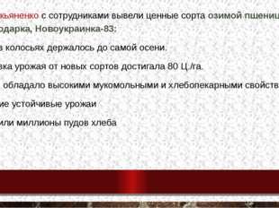 П.П.Лукьяненко с сотрудниками вывели ценные сорта озимой пшеницы Краснодарка,