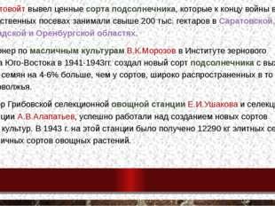 В. С. Пустовойт вывел ценные сорта подсолнечника, которые к концу войны в про