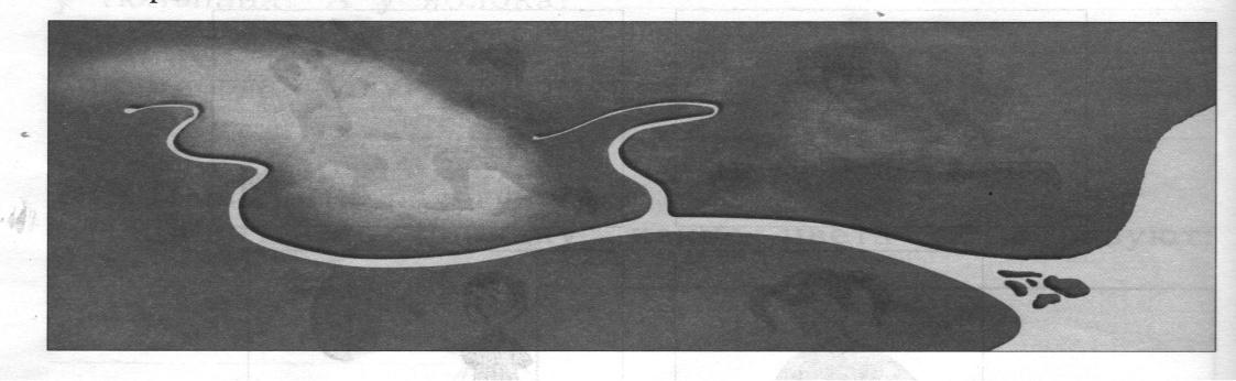 Контрольная работа по окружающему миру как изучают окружающий  Подпиши части реки На левом берегу нарисуй грибы