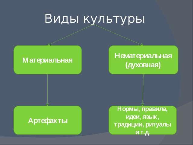 Виды культуры Материальная Нематериальная (духовная) Артефакты Нормы, правила...