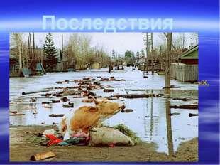 Последствия Наводнения наносят прямой и косвенный ущерб экономике. Прямой - г