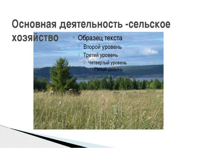Основная деятельность -сельское хозяйство