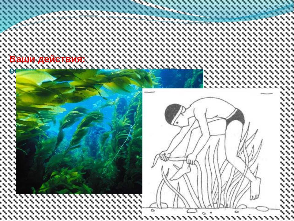 Ваши действия: если нога запуталась в водорослях