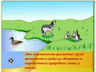 Это совокупность различных групп организмов и среды их обитания в определённ