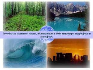 Это область активной жизни, включающая в себя атмосферу, гидросферу и литосф