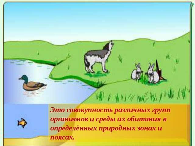 Это совокупность различных групп организмов и среды их обитания в определённ...