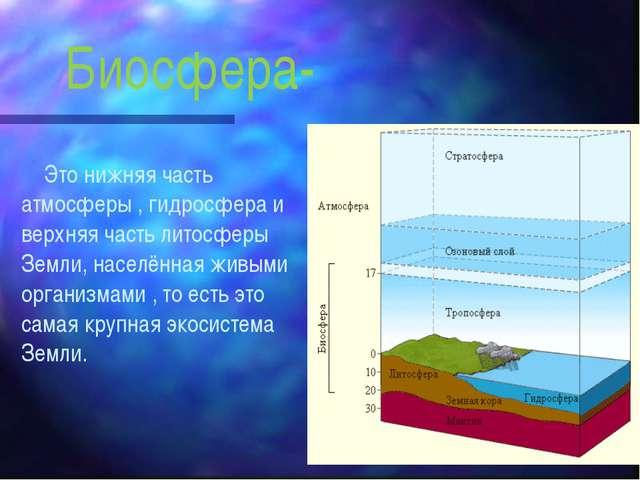Биосфера- Это нижняя часть атмосферы , гидросфера и верхняя часть литосферы З...