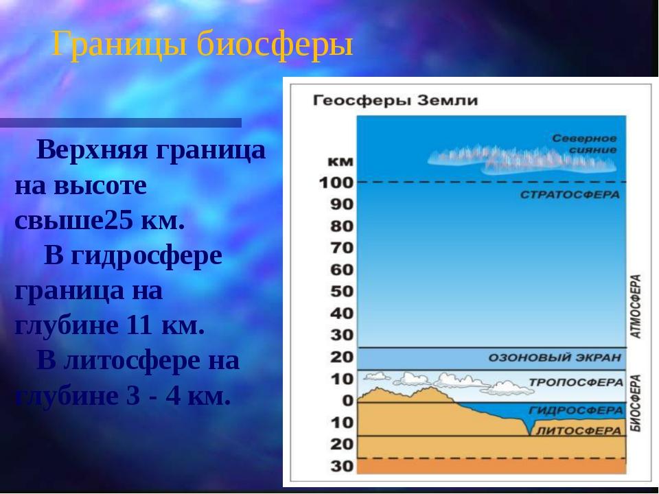 Границы биосферы Верхняя граница на высоте свыше25 км. В гидросфере граница н...