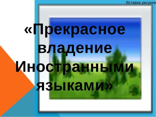 «Прекрасное владение Иностранными языками»