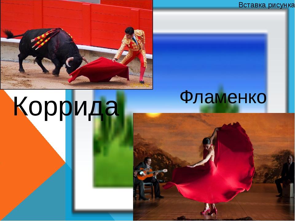 Фламенко Коррида