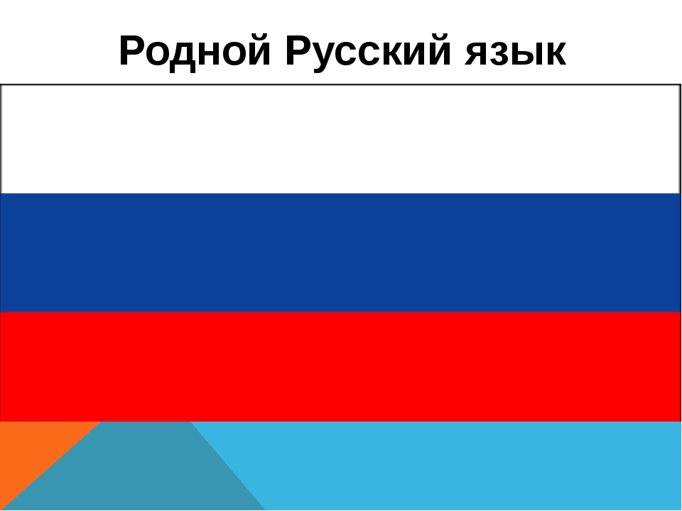 Родной Русский язык