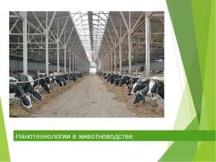 Нанотехнологии в животноводстве