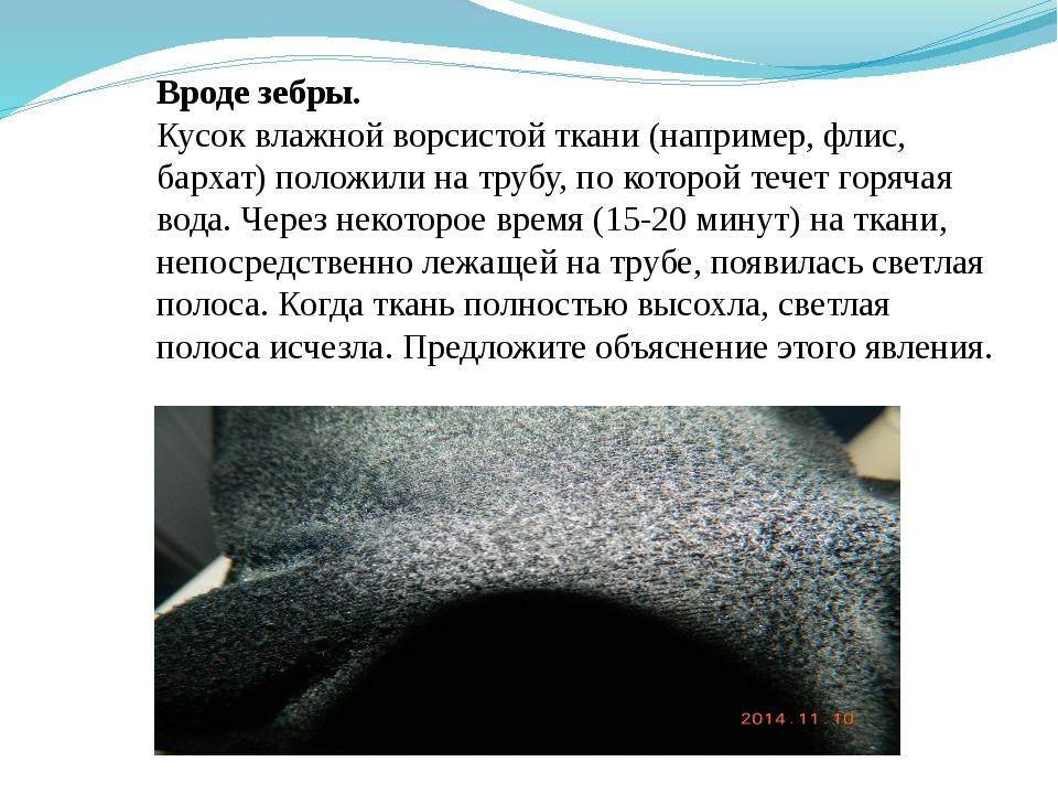Вроде зебры. Кусок влажной ворсистой ткани (например, флис, бархат) положили...