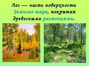 Лес— часть поверхностиЗемного шара, покрытая древеснымирастениями.