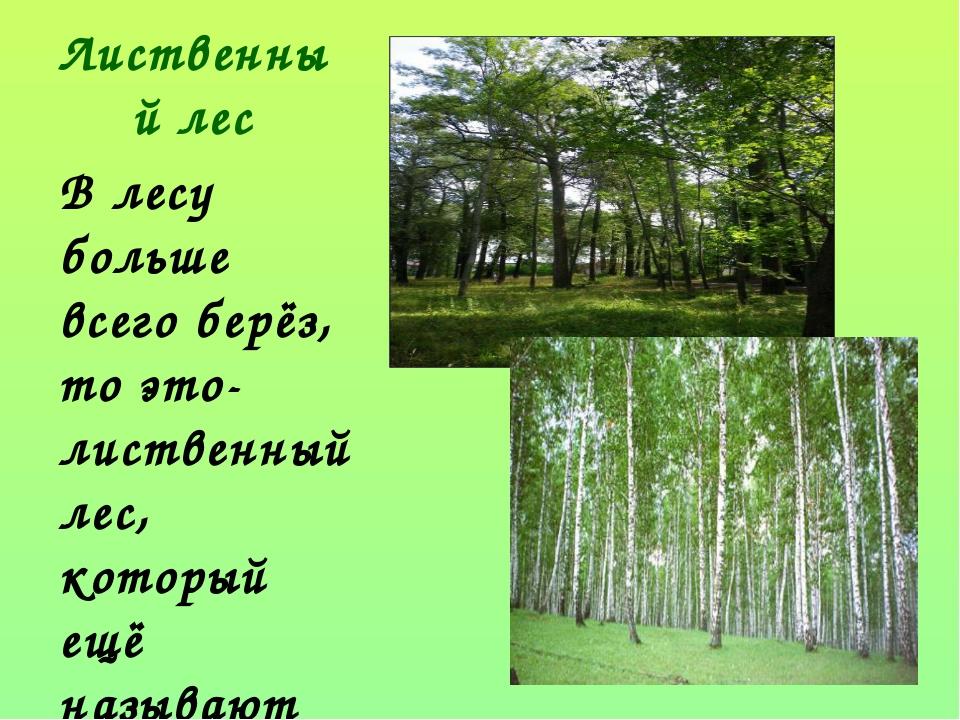 Лиственный лес В лесу больше всего берёз, то это- лиственный лес, который ещё...